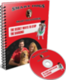Stop Your Dog From Barking - Audio/Guidebook