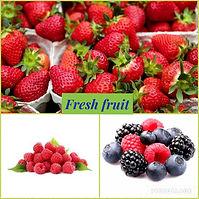 fresh fruit collage .jpg