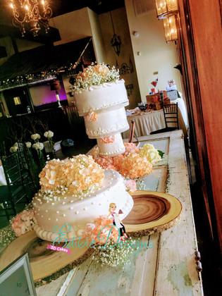 cakes  (3).jpg