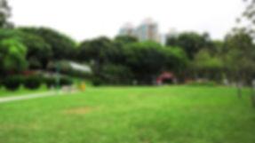 05_yuenlong2.jpg