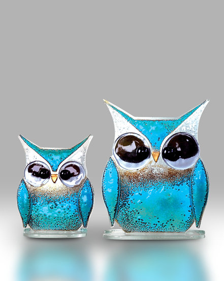 Owlets Small