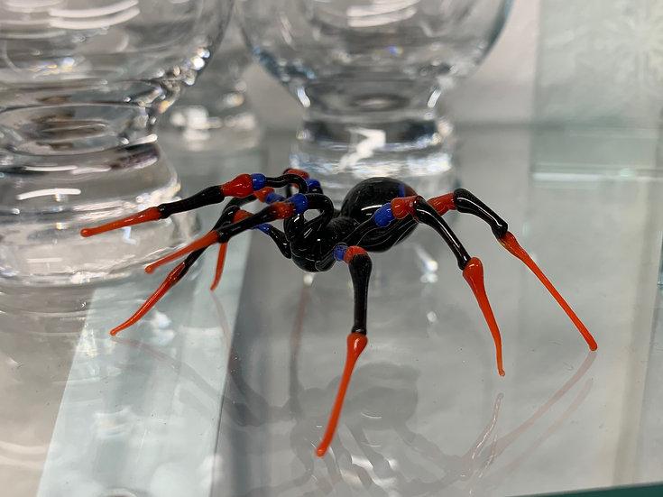 Red Legged Spider