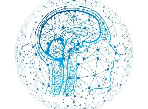 Be Brain-Smart! Part I