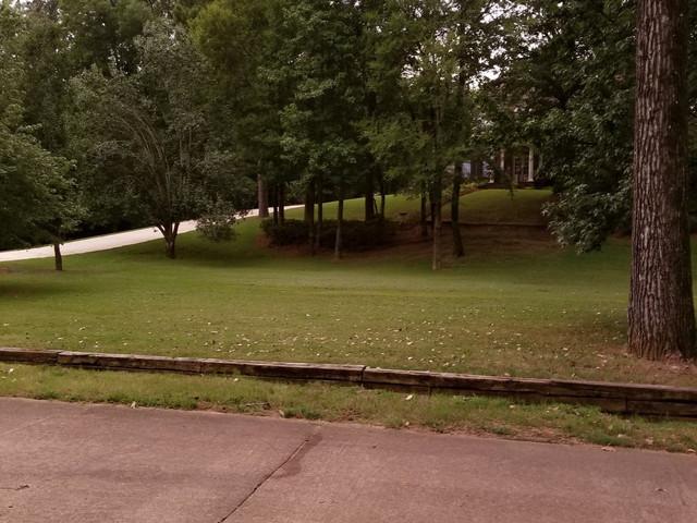 street_lawn.jpg