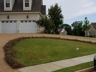 Front_lawn.jpg