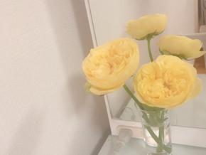 毎日の生活に、花をひと添えする習慣