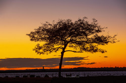 Outer Harbor Sunset