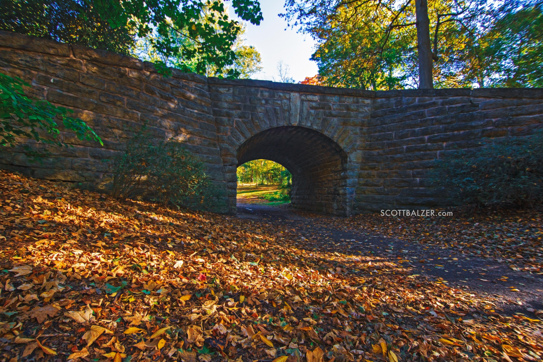 Delaware Park Bridge Fall