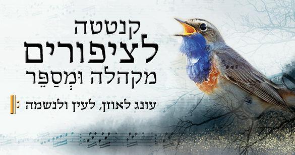 Birds_web_banner.jpg