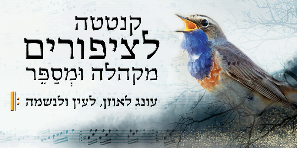 קנטטה לציפורים, מקהלה ומספר