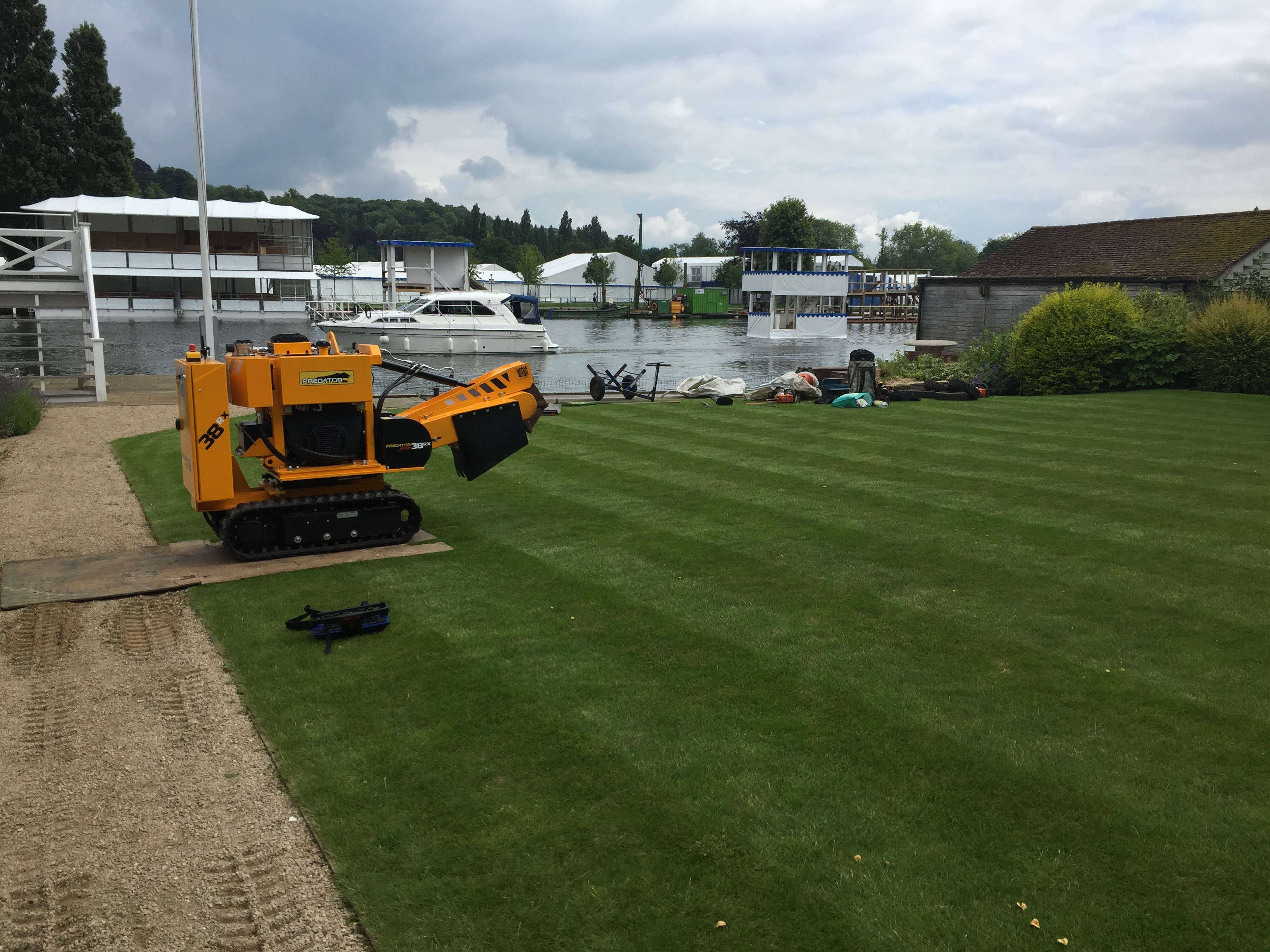 root removal, stump removal