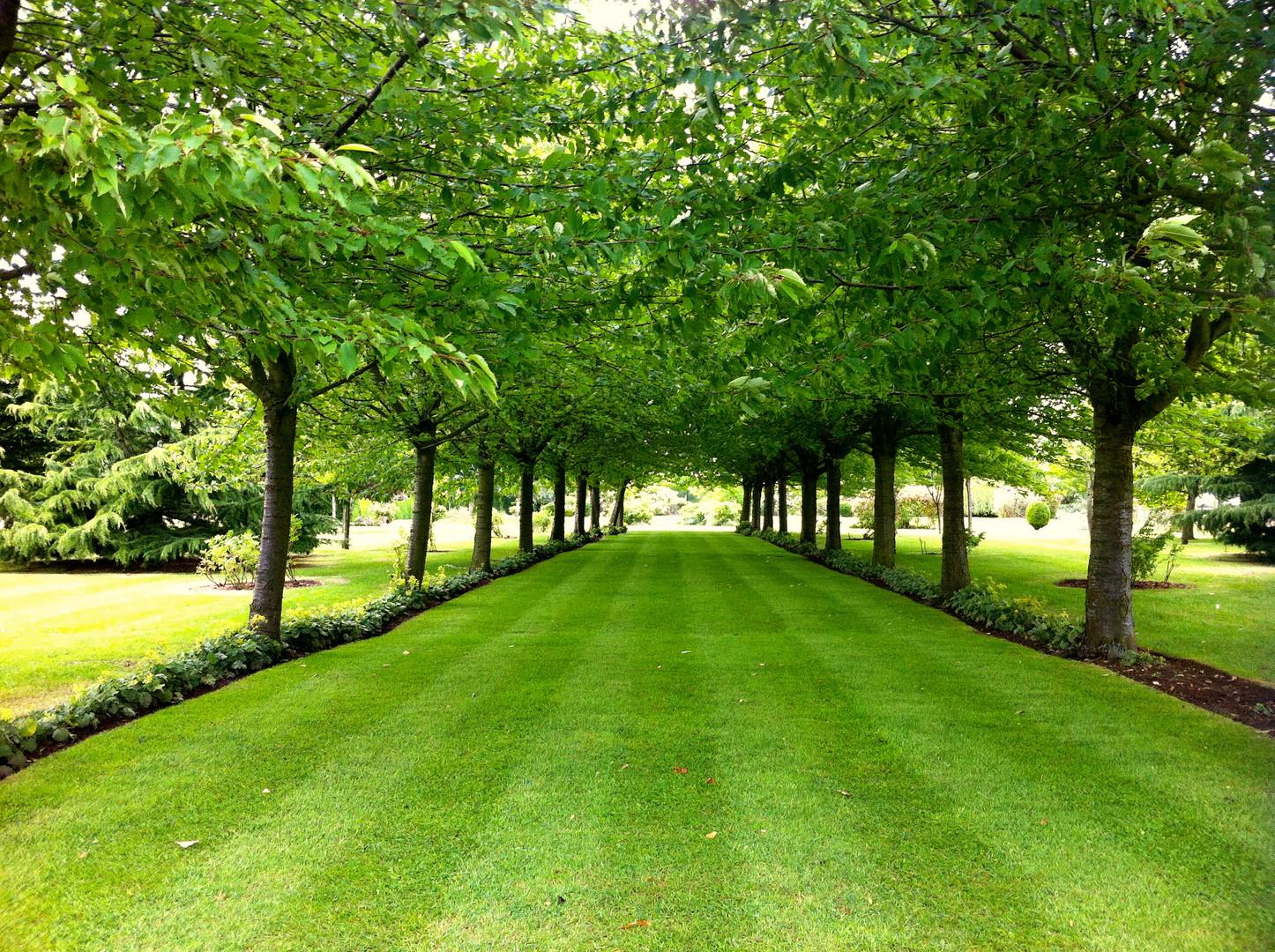 Estate & Woodland Management