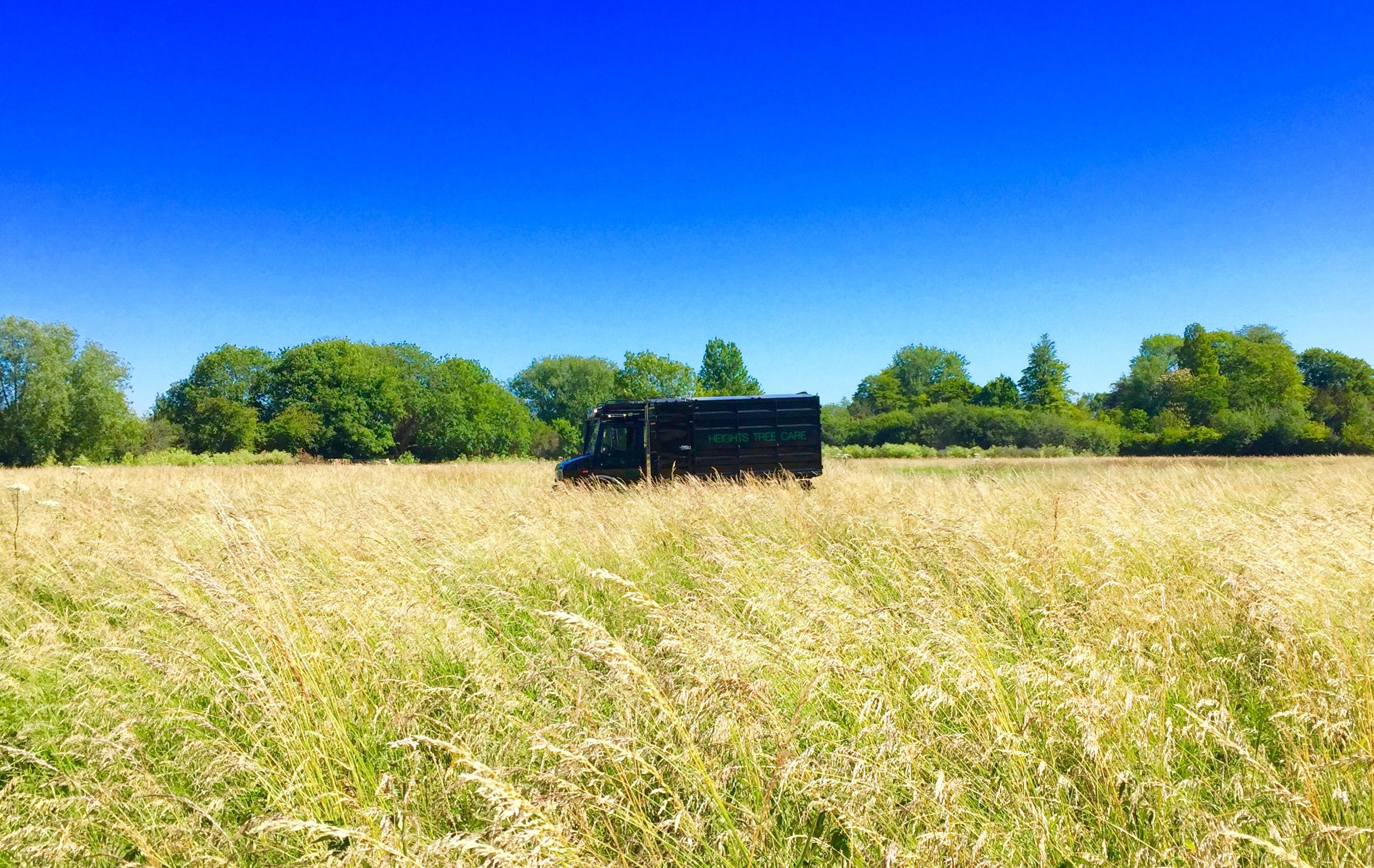 woodland estate management