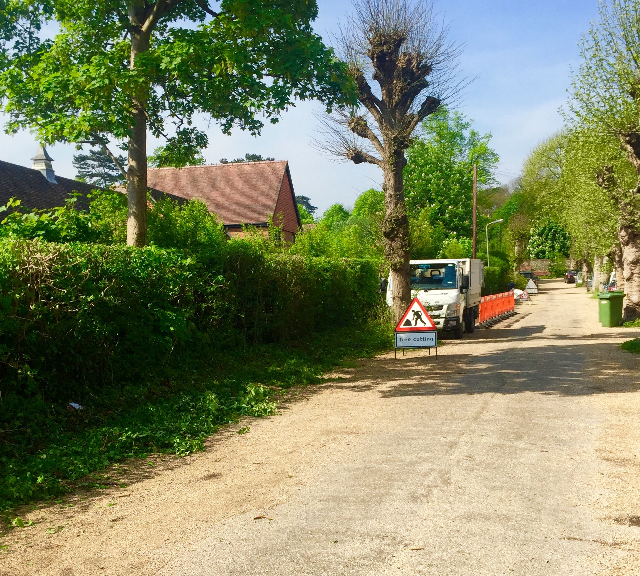 hedge cutting, hedge maintenance