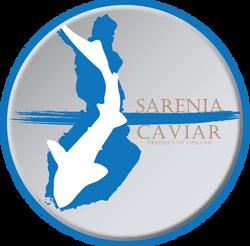 Logo Concept-3