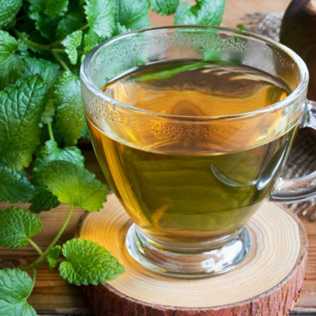 Lemon Balm for Wellness