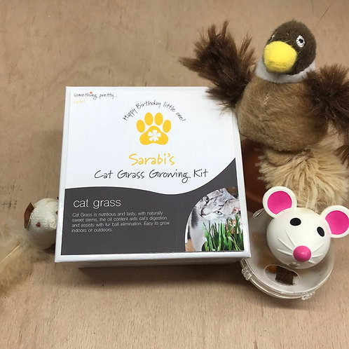 Personalised Cat Grass Gift Set