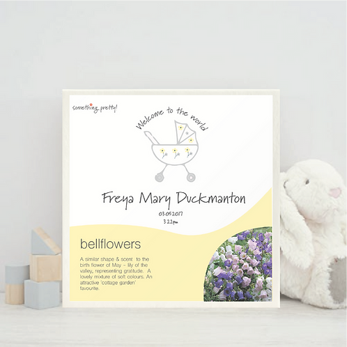 Personalised New Baby Birth Flower Gift Set