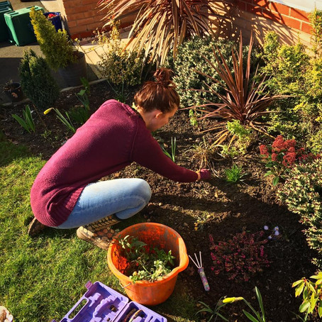 What to do in Your Garden in April