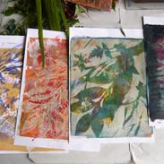 Student Emma's beautiful botanical prints