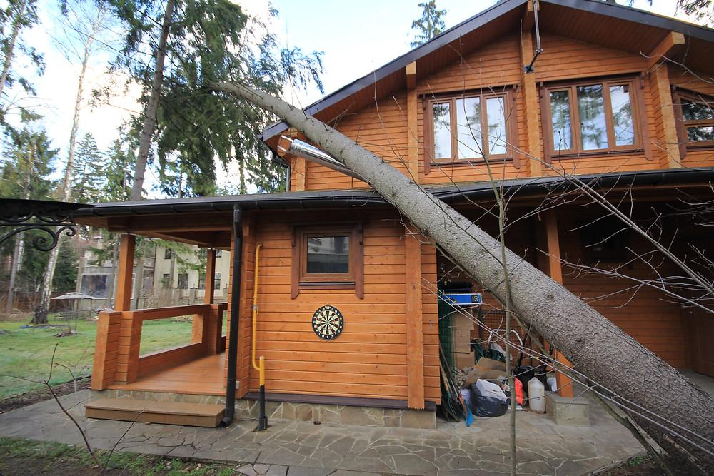 Дерево упало на дом? Мы поможем, звоните!