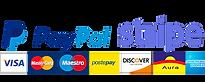 pagamenti-sicuri-paypal.png