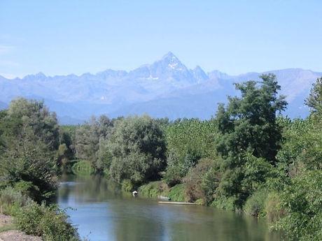 Villafranca Piemonte fiume Po vimini e salici intreccio