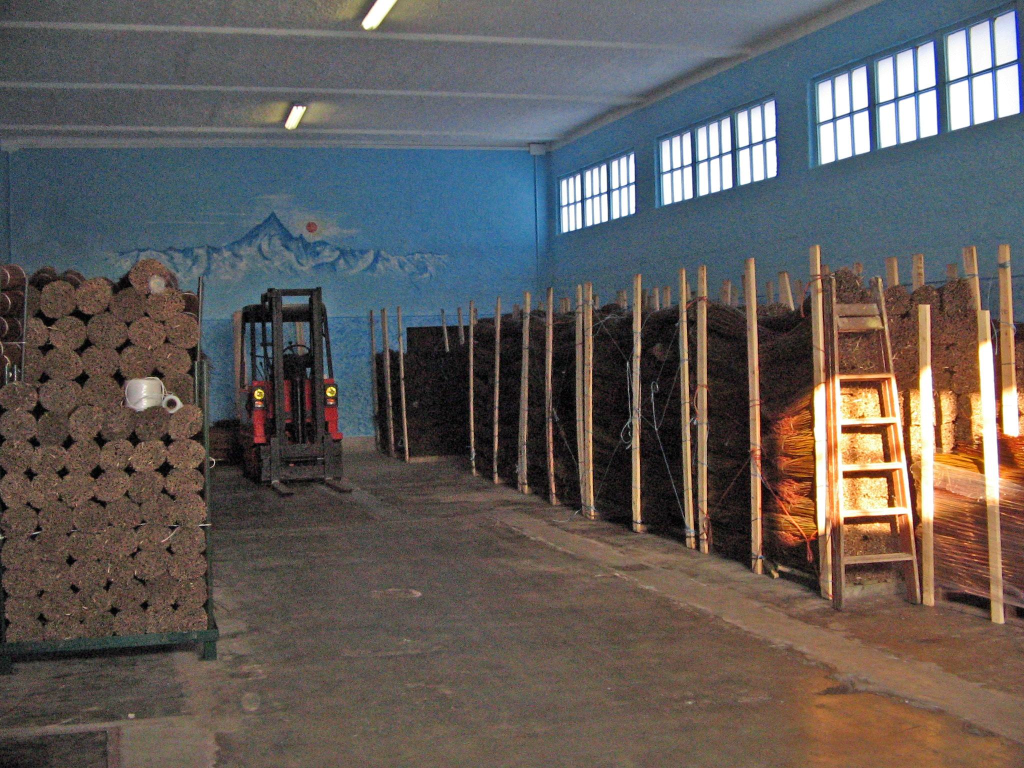 2006,salici in magazzino (3)