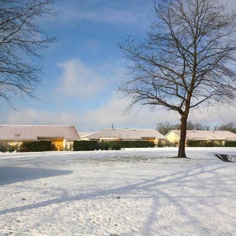 neige HINX 2.JPG
