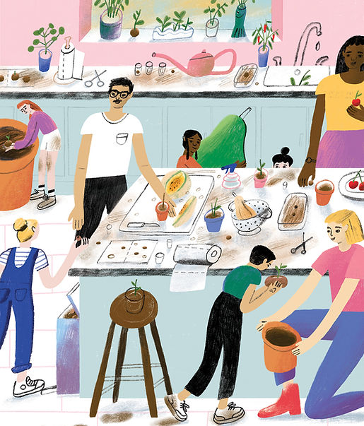 An illustration of a group of 8 adults and children in the kitchen organising seeds from fruits and vegetables. Colourful and texturised.