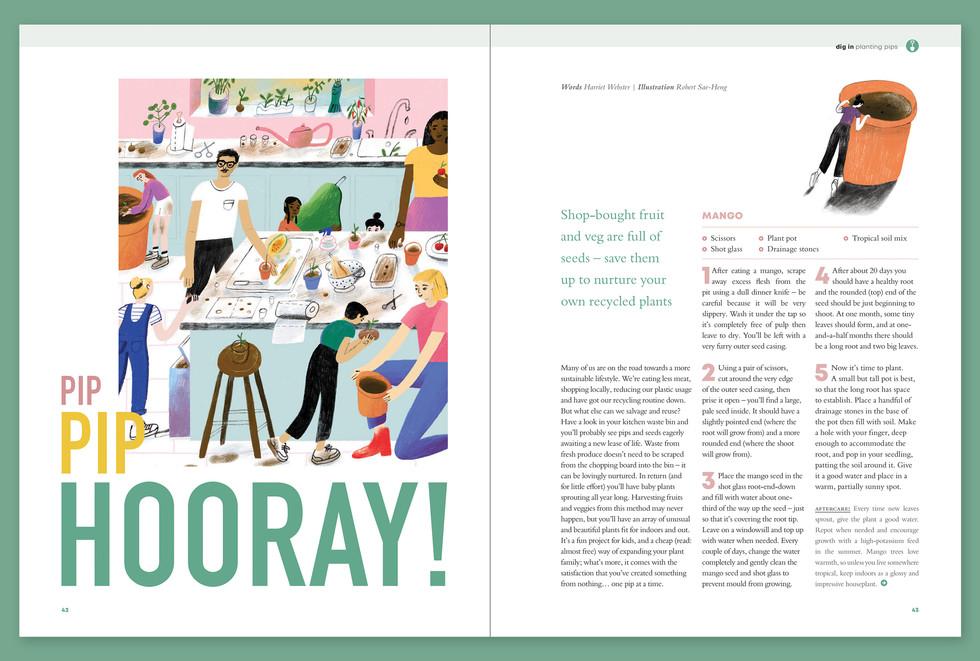 Robert Sae-Heng Bloom magazine Pip Pip Hooray!