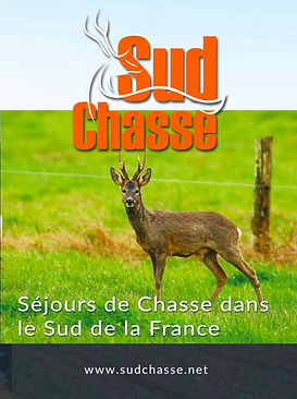 sud chasse sejours