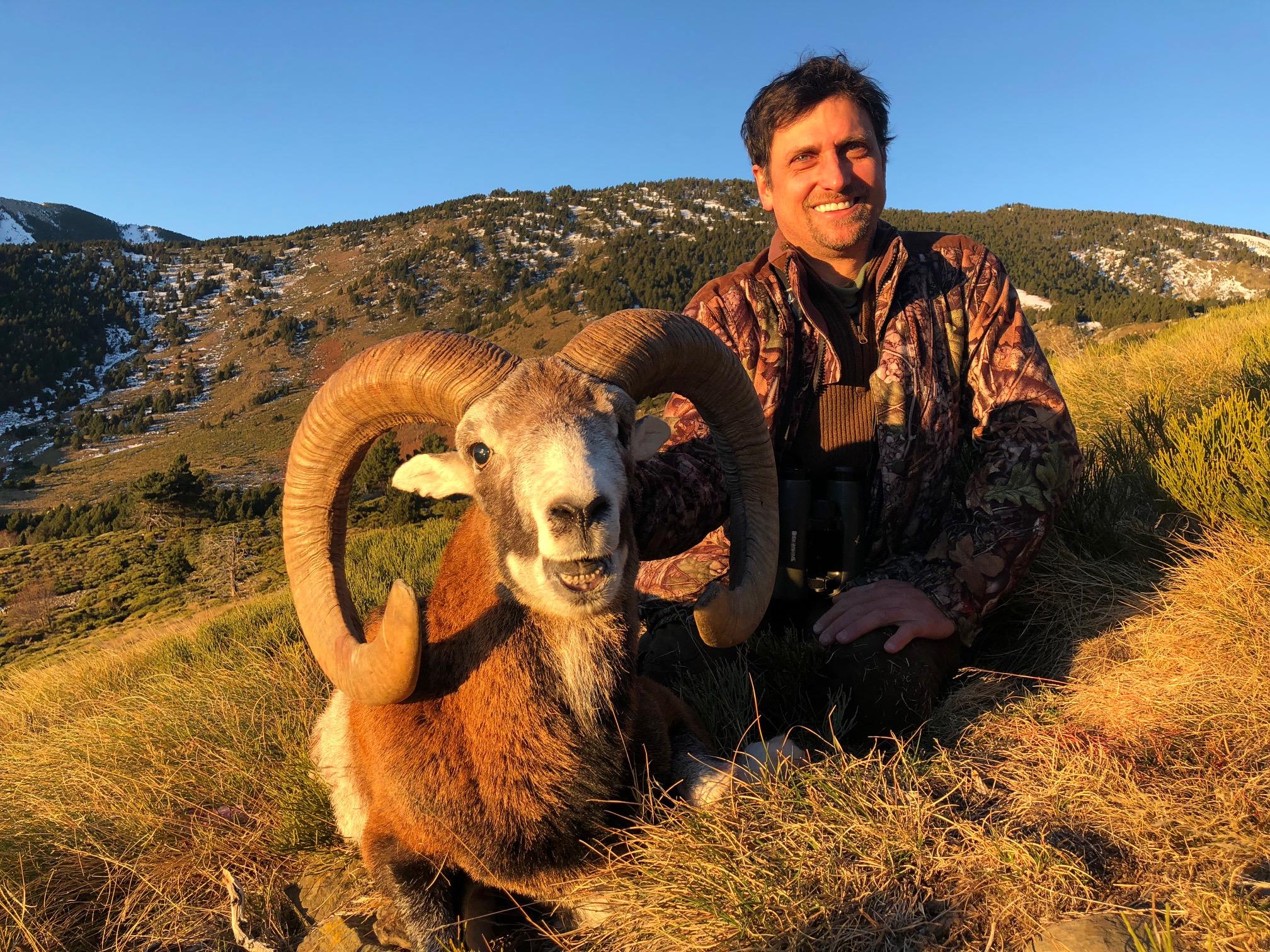 28/11/2017 mouflon approche