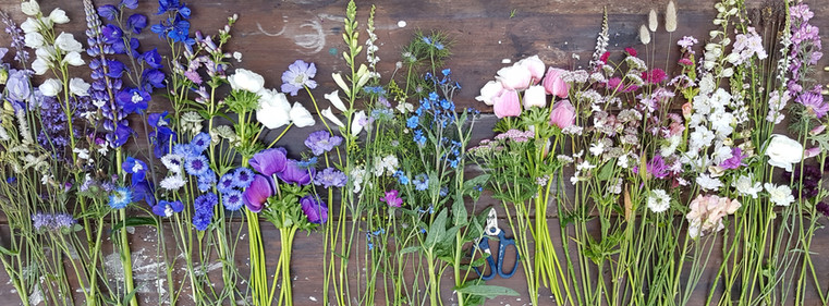 black-shed-june-flowers.jpg