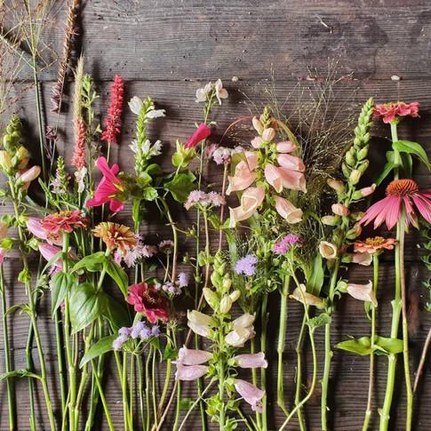 october-black-shed-flowers.jpg