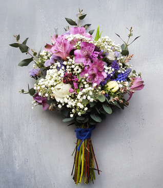 salvia alstroemeria blackshed flowers