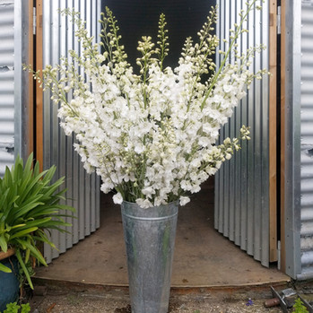 black-shed-diy-wedding-flowers.6.jpg