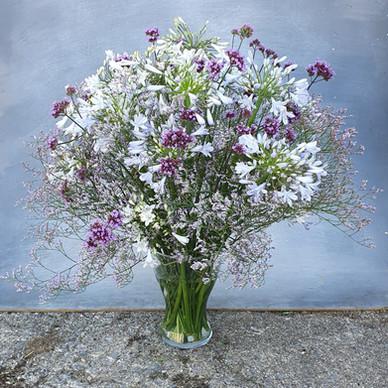 agapanthus-arrangement-black-shed-flower