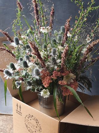 eryngium-grasses-arrangement-black-shed-