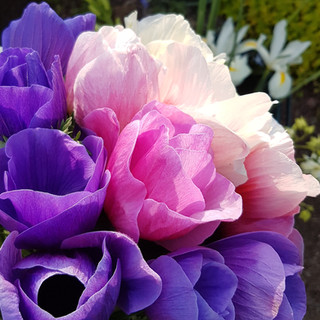 anemone-bouquet-black-shed-flowers.jpg