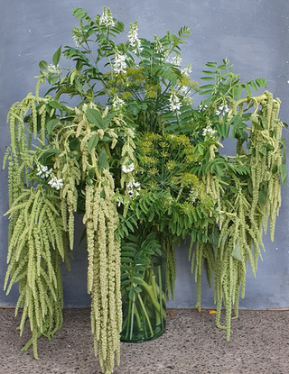 green-amaranthus-arrangement-black-shed-