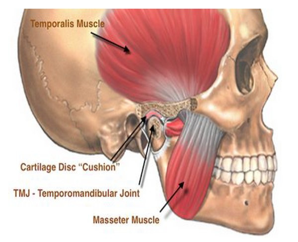 face pain, jaw pain, jaw popping, jaw clicking, jaw pain cornelius, jaw pain davidson, jaw pain huntersville