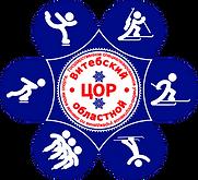 Логотип ВОЦОР.png