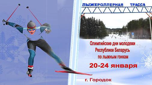 Олимпийские дни молодежи.jpg