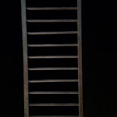 Small Ladder | $20