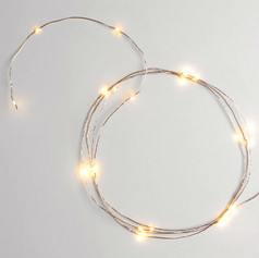 LED String Lights | $6