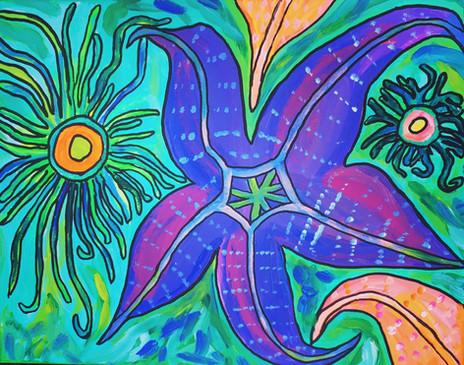 Alki Sea Stars and Anenomes