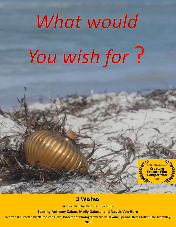 3 Wishes - poster b.jpg