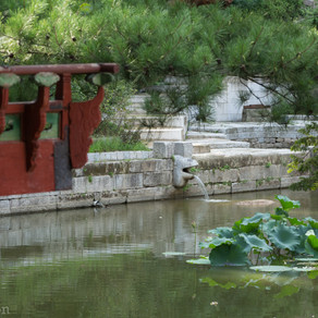 Séoul, Jardin secret de Changdeokgung
