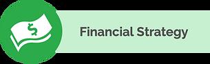 financialstrategyuse.png